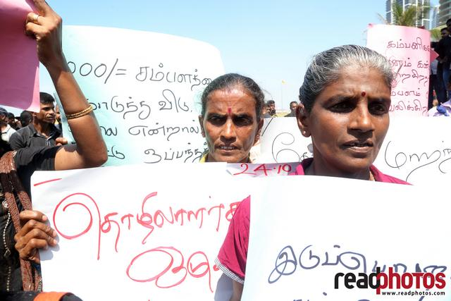 Estate workers protest against low wages, Sri Lanka