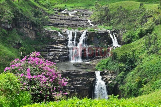 Waterfall with flowers, Sri Lanka